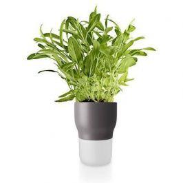 Горшок для растений с автополивом,11 см, серый 568153 Eva Solo