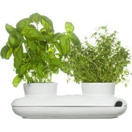 Двойной горшок для зелени Herb, 26х12х7 см 5015859 Sagaform