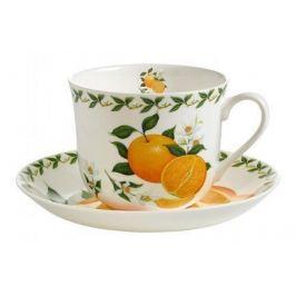 Чашка Апельсин (0.48 л) с блюдцем MW637-PB8110 Maxwell & Williams