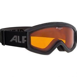 Alpina Горнолыжные очки Alpina