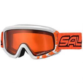 Salice Горнолыжные очки Salice
