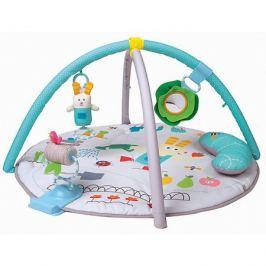 TAF TOYS Развивающий коврик Taf Toys с подушкой