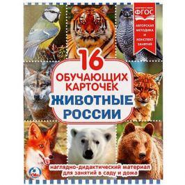 Умка Обучающие карточки Умка «Животные России»