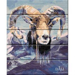 Dali Набор для раскрашивания по номерам по дереву Dali