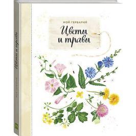 Манн, Иванов и Фербер Книга Мой гербарий