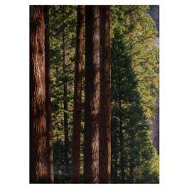 Фотообои бумажные «Йосемитский водопад» 184х254 см