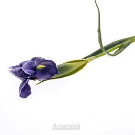 Растение искусственное Ирис, размер: h60см, сиреневый