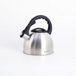 Чайник со свистком POLARIS Verde 2,2л, нерж.сталь