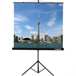 Экран Lumien Eco View LEV-100101