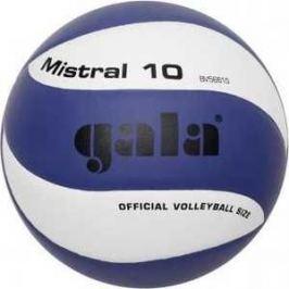Мяч волейбольный Gala Mistral 10, арт. BV5661S, р. 5, бело-синий