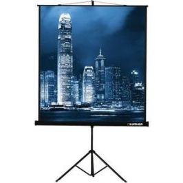 Экран для проектора Lumien Master View 153x153 (LMV-100102)