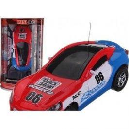 WL Toys Радиоуправляемая микромашина в банке