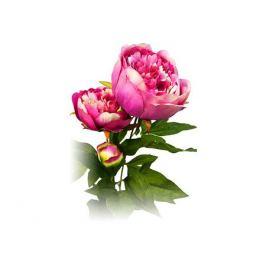 растение искусственное Пион розовый 72см