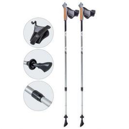 палки для скандинавской ходьбы ECOS телескопические 85/135см антишок