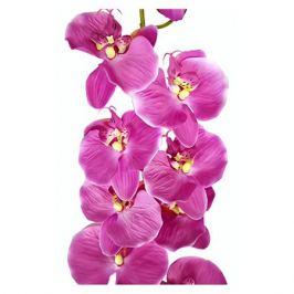 растение искусственное Орхидея 124см цвет в асс-те