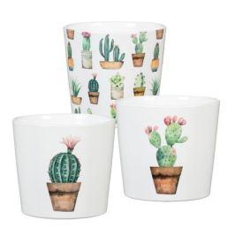 кашпо керамическое Cactus Garden 870 d9см