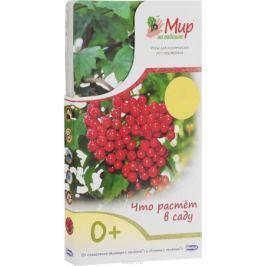 Умница Обучающие карточки Что растет в саду 4620755680362