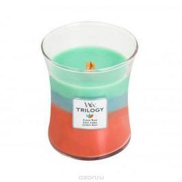 Свеча ароматизированная WoodWick