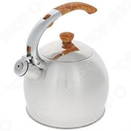Чайник со свистком Teco TC-110