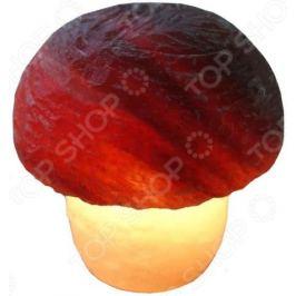 Лампа солевая Wonder Life «Гриб»