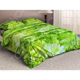 Комплект постельного белья МарТекс 1442820/62В