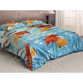 Комплект постельного белья МарТекс 4210