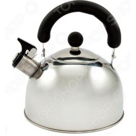 Чайник со свистком Добрыня DO-290