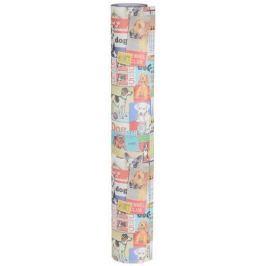 Бумага упаковочная Даринчи № 24, 69 х 48 см, 2 листа