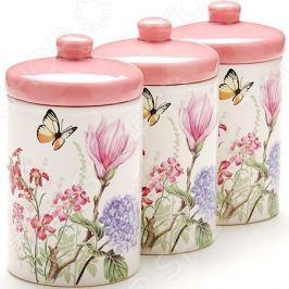 Набор банок для сыпучих продуктов Loraine LR-25633 «Бабочки»
