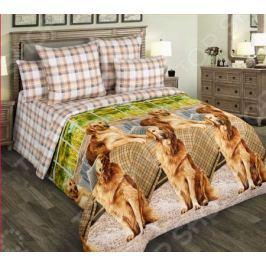 Комплект постельного белья Королевское Искушение «Рич»