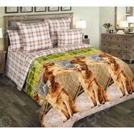 Комплект постельного белья Белиссимо «Рич»