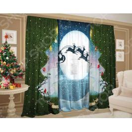 Комплект: шторы и тюль ТамиТекс «Зимний денек»