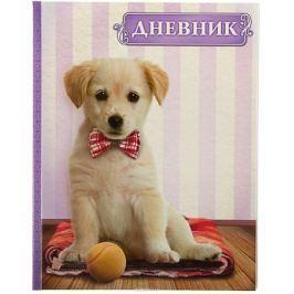 Calligrata Дневник школьный Собака и мяч