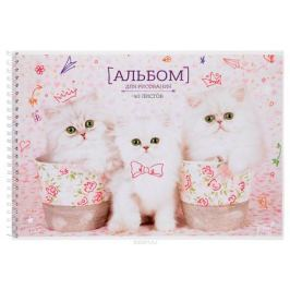 ArtSpace Альбом для рисования Питомцы Котята 40 листов А40сп_9179