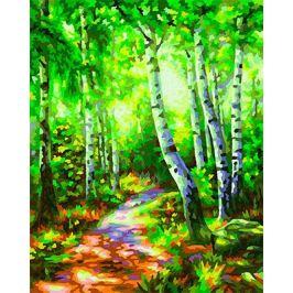 Набор для рисования Schipper Березовый лес 9240801